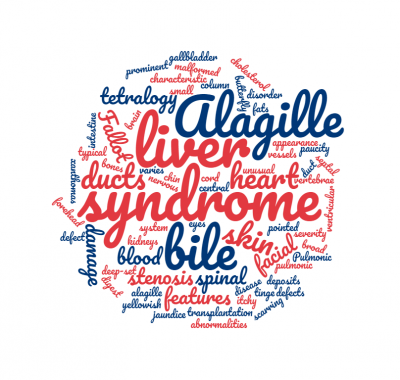 Alagille wordcloud
